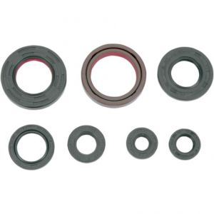K&S TECHNOLOGIES 50-4001 ENGINE OIL SEAL KIT