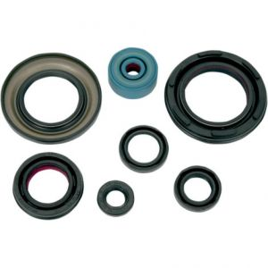 K&S TECHNOLOGIES 50-4002 ENGINE OIL SEAL KIT