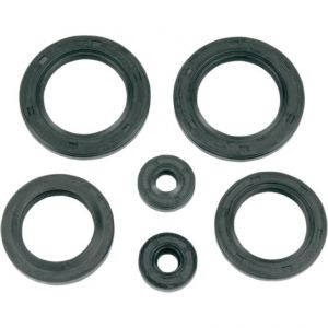 K&S TECHNOLOGIES 50-5001 ENGINE OIL SEAL KIT